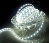 luz de tira flexible blanca de los 60LEDs/M 5050 LED
