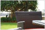 Mobília ao ar livre do jardim que janta o jogo 8 Seaters (MTC-144)