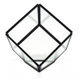 De in het groot Geometrische Bloem van Terrariumfor van het Glas