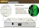 Matelas en bambou tricoté de mousse de mémoire de tissu
