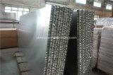 Пожаробезопасно Bespoke алюминиевые панели украшения сота