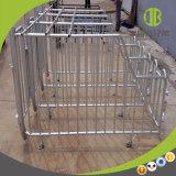 Enige Box van uitstekende kwaliteit van de Box van de Box van de Zwangerschap van de Apparatuur Poulty de Individuele
