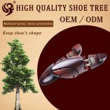 Vente en gros Factory Light Shoe Tree Cedar