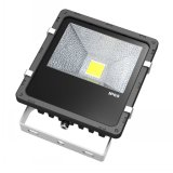 Waterproof Black Color 30W LED Flood Light Outdoor Bridgelux LED