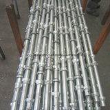 Sistema durable seguro de Cuplock para la construcción