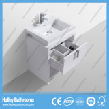 Самомоднейший популярный пол - установленный шкаф ванной комнаты с светильником СИД (BF384D)