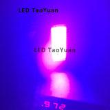 Tinta de cura UV de 385nm 200W que cura o sistema