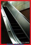 Grüne Inlandspreis-Rolltreppe in Shuzhou