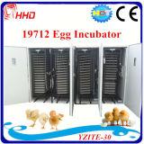 كبير آليّة بيضة محسنة لأنّ 20, 000 دجاجة بيضات