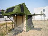 [كرت8002] سقف أعلى خيمة