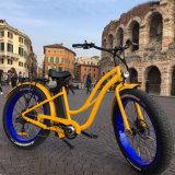 2017中国からの脂肪質のタイヤの電気バイク26inch浜の電気自転車