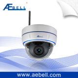 H. 264 appareil-photo BL-CB848E-S48-W4 de dôme de couleur d'IP sans fil de jour/nuit
