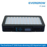 Luce dell'acquario di Evergrow It2080 LED per il carro armato di pesci