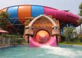 물 공원 활주 거대한 큰짐승 물 미끄럼