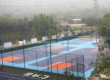 Suelo modular del baloncesto de Nicecourt para el uso de Cummunity, residencial y del parque (bronce de la plata del oro del baloncesto)