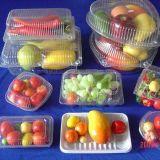 Plastikfrucht-Behälter, der Maschine bildet
