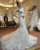 Il merletto collega il vestito con un manicotto da cerimonia nuziale nuziale di Champagne della sirena con la decorazione del fiore