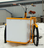 Трицикл груза Trike самого дешевого цены Уилера Bajaj 3 электрический миниый