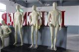 Mannequins maschii pieni di usura convenzionale di formato standard dell'Europa (GS-DM-002A)