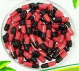 Maquinaria farmacêutica de Njp-3500c