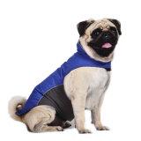 Фабрика пальто курток собаки ватки собаки любимчика наградная водоустойчивая