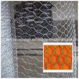 熱い販売の編まれた六角形の金網