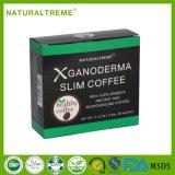 Ganodermaのきのこが付いている速い脂肪質の非常に熱いコーヒー