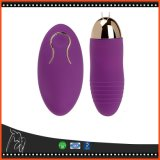 Rouleau-masseur rechargeable vibrant à télécommande sans fil du vibrateur USB de remboursement in fine