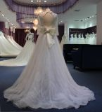 Um vestido de casamento longo da luva de Tulle da linha/império