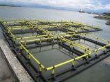 Jaula flotante de los pescados de la acuacultura de calidad superior del HDPE