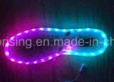 Lámpara colorida de la tira de la luz de tira del zapato del LED