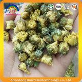 Boissons jaunes sèches de thé de fleurs de bourgeons de chrysanthemum