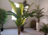 Árvore de banana da decoração da carcaça de Aritificial