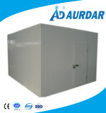 De Condensator van uitstekende kwaliteit voor Koude Zaal voor Verkoop