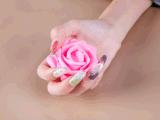 못 포장이 아름다움에 의하여 꽃이 핀다