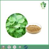 100%のHPLC著自然なイチョウのBilobaの葉のエキス24% 6% 5ppm