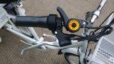 리튬 건전지 연장자, Tektro V 브레이크 E 자전거를 위한 적은 세발자전거