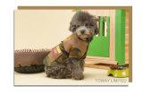 Cool Fbi Camouflage Vêtements pour chien Cotton Coral Velvet Pet Coat