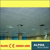 Configuration d'intérieur exposée décorative fausse en aluminium dans le plafond suspendu