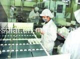 fabrikmäßig hergestellter MonoSonnenkollektor der hohen Leistungsfähigkeits-320W