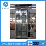 Piezas del elevador con la cabina de cristal de la decoración de la alta calidad (OS41)