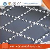 壁のスパイクとして使用される工場価格かみそりの有刺鉄線
