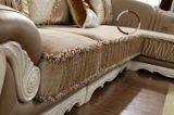 Base moderna do sofá da tela da sala de visitas da mobília