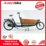 Entrega elétrica Ebike da pizza da bicicleta da carga do triciclo da carga da bicicleta da carga