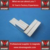 De krachtige Industriële Gesinterde Magneten van de Zeldzame aarde van N45 N48 N52