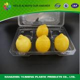 Contenitore di plastica della frutta dell'alimento quadrato trasparente materiale dell'imballaggio dell'animale domestico