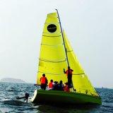 De dagelijkse Zeilboot van de Sport van het Gebruik FRP Hull Monohull met de Kleur van de Douane