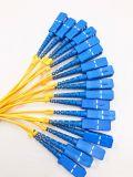 GPON Telecomunicaciones 1X16 caja plástica PLC Splitter para FTTH / Pon Comunicación / óptico