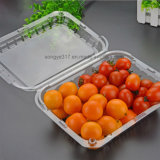 チェリートマト及びオレンジのために包む明確なまめ