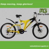 """bicicleta de montanha 26 """" 250W elétrica com suspensão cheia"""